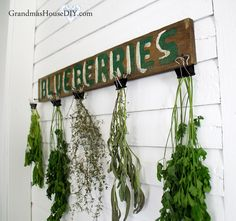 Herb drying rack utilizing an old sign and office binder clips!