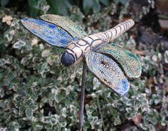 Nahezu alle europäischen Arten der Libellen stehen wegen der Zerstörung ihres Lebensraumes durch den Menschen auf der Liste der bedrohten Tierarten. Durch die Verschmutzung von Gewässern und die...