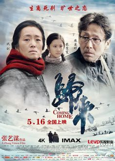 Coming Home (2014) - FilmAffinity