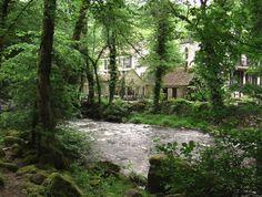 Avallon 89 Bourgogne. Le Moulin des Ruats ,  vallée du Cousin. France, Le Moulin, Places Ive Been, Cousin, Country Roads, Earth, Adventure, Nature, Plants