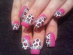 Zebra nailz