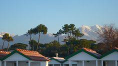 cabins, pine trees, Apuan Alps #italy #lucca #fortedeimarmi #versilia #beach #spiaggia #rivera #mare #sea  #vacanze #travel #viaggio #alpi apuane #pine trees