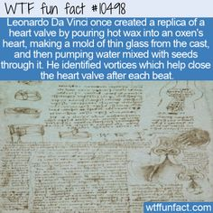 WTF Facts - Page 31 of 1306 - Funny, interesting, and weird facts Daily Fun Facts, Wtf Fun Facts, True Facts, Funny Facts, Funny Jokes, Odd Facts, Unusual Facts, Crazy Facts, Random Facts
