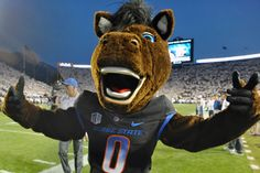 Boise State came back from 25 down to beat Colorado State in overtime Boise State Football, Boise State University, Football Team, College Football Schedule, State Game, Go Broncos, Comebacks, Nfl, Colorado