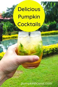Pumpkin cocktail drinks if you want some pumpkin drinks for your Fall party! Pumpkin Martini, Pumpkin Cocktail, Pumpkin Drinks, Pumpkin Smoothie, Pumpkin Spice Coffee, Spiced Coffee, Cranberry Pumpkin Recipe, Pumpkin Growing, Cocktail Drinks