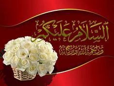 Beautiful Morning Messages, Good Morning Messages, Good Morning Greetings, Good Morning Images, Morning Prayer Quotes, Morning Prayers, Assalamualaikum Image, Best Quotes In Urdu, Beautiful Rose Flowers
