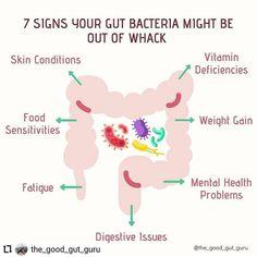 IG: @agutsygirl www.agutsygirl.com #guthealth #healthyliving #leakygut #IBS Girls Bible, Vitamin Deficiency, Gut Bacteria, Leaky Gut, Adrenal Fatigue, Gut Health, Autoimmune, Natural Healing, Weight Gain