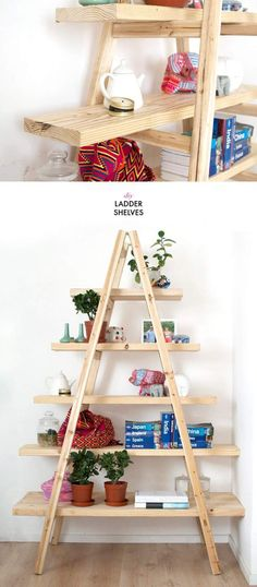 DIY Ladder Shelves. Click on image to see more home decor DIY crafts.