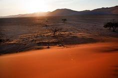 dunes, sun, sand by marylexa