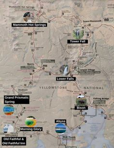 This list and map of the top things to do in Yellowstone make it easy to plan your visit, whether you are visiting for one day or more! Yellowstone Map, Yellowstone Nationalpark, Yellowstone Vacation, West Yellowstone Montana, Cabins Near Yellowstone, Wyoming Vacation, Vacation Trips, Tennessee Vacation, Travel