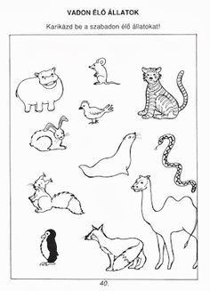 Picasa Webalbumok Cicely Mary Barker, Clip Art, Album, Education, Math, School, Camels, Archive, Picasa