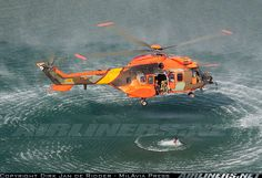 """Spanish Army (Spanish: Ejército de Tierra; lit, """"ground army""""): Eurocopter AS-532UL Cougar"""