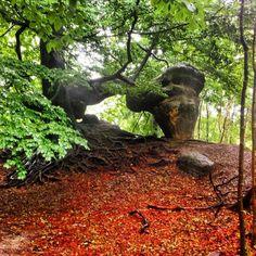 Kleines Prebischtor  #hiking #wandern #malerweg #elbsandsteingebirge #sächsischeschweiz #saxony #outdoors #nature #fb