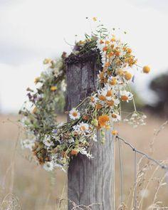 Le temps qui passe dans le jardin d'Eugénie Wild Flowers, Beautiful Flowers, Flowers Nature, Fresh Flowers, Spring Flowers, Flower Aesthetic, Summer Wreath, Winter Wreaths, Spring Wreaths