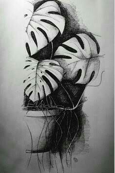 Charcoal drawing. Charcoal is a great media to use as it is very easy to show light and darks.  - Artist Unknown