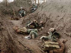 trincheras  imagenes de la primera guerra mundiaol