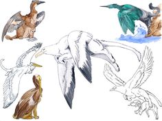 WHAT an original title. Really, now. Beware, this is pretty big. Anyways, all the gryphon paintings (more or less) that I've done since...er....three quarters ago? Maybe.... The older ones are easy...