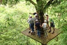 Canopy zip line tour in Costa Rica great for family activity.  Monteverde, Tamarindo, Manuel Antonio...you can zip anywhere!  www.villascostarica.com