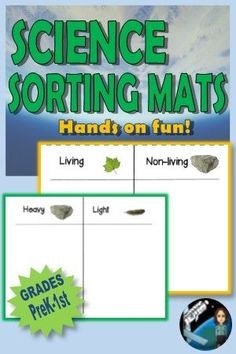 Sorting By Attributes Kindergarten Science Experiments, Fourth Grade Science, Preschool Science, Science Resources, Middle School Science, Elementary Science, Science Lessons, Science Education, Teaching Science