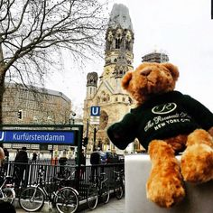 Last week, Teddy The Roosevelt Hotel bear traveled to Germany! Here he is visiting the Kaiser Wilhelm Memorial Church #TravelTuesday