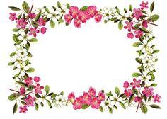 Vintage Flowers Clip Art Borders | vintage flower frame / border png; free download; digital ...
