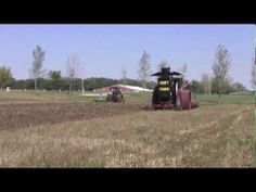 ▶ ForestCity2012C - YouTube