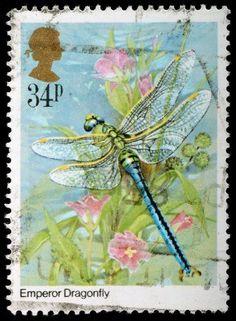 UNITED KINGDOM - CIRCA 1985: A British Used Postage Stamp showing Emperor Dragonfly, circa 1985