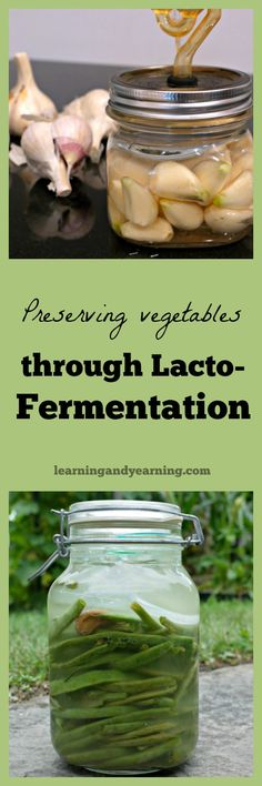 Preserving vegetables through fermentation has stood the test of time. It's how our ancestors preserved food, and it retains nutrients more than canning or even freezing. Learn how to preserve food like pickles, sauerkraut, and much more through lacto-fermentation now!