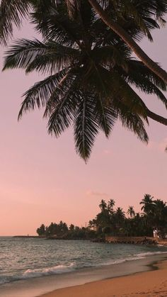 Iphone Wallpaper – – Pinme Wallpaper – - Wallpaper World Whats Wallpaper, Wallpaper World, Tree Wallpaper Iphone, Beach Wallpaper, Aesthetic Iphone Wallpaper, Nature Wallpaper, Aesthetic Wallpapers, Iphone Wallpapers, Iphone Backgrounds