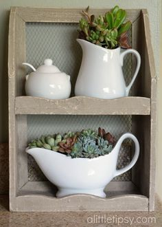 Succulents in pretty little containers...A Little Tipsy: Decorating with Succulents