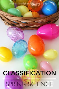 Spring Classification Science Activity - Pre-K Pages: What a great way to use plastic Easter Eggs for learning Easter Activities For Toddlers, Science Activities For Kids, Cool Science Experiments, Preschool Themes, Spring Activities, Preschool Eggs, Science Ideas, Therapy Activities, Science Center Preschool