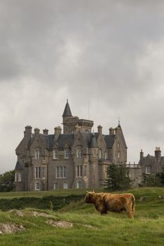 Isle of Mull, Argyll and Bute, Scotland.