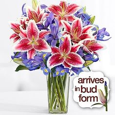 Rochester Flowers  Theshopstation Online Fresh Flowers Lilies Wedding Flowers  Birthday Flowers  Send Flowers  Flower Arrangements  Floral Arrangements  Lilies Bouquets -- Click on the image for additional details.