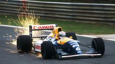 formula1-power:  Riccardo Patrese (Williams-Renault FW14B), 1991 Portuguese GP, Estoril