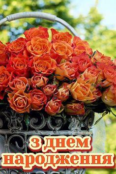 Happy Anniversary, Happy Birthday, Happy Brithday, Happy Brithday, Urari La Multi Ani, Happy Birthday Funny, Happy Birth