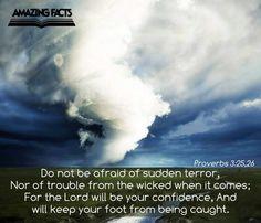 Proverbs 3:25,26