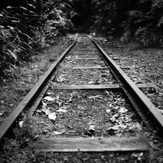 Friends come in and out of our lives Our Life, Railroad Tracks, Friends, Amigos, Boyfriends, Train Tracks