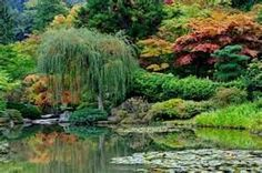 japanese garden pictures - Bing Images