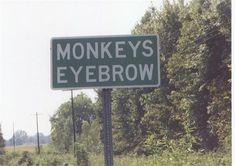 Monkeys Eyebrow, Kentucky