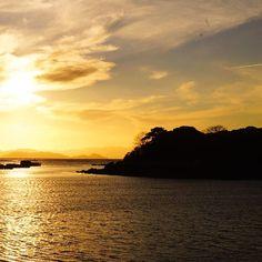 【mateyo_31】さんのInstagramをピンしています。 《까막섬 분위기 5지9yo #바다#light #yellow#sunrise#sun#colorful#nature#写真好きな人と繋がりたい#sony#sea#pic#camera#海#自然#景色#風景#자연#풍경#landscape#travel#여행#sunset#설날#お正月#光#太陽#sky#sel35f28z#마량#강진》