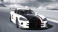 Black And White Dodge Viper Sports Car Race Track Wallpaper - http://www.gbwallpapers.com/black-white-dodge-viper-sports-car-race-track-wallpaper/ (Black And White, Dodge Viper, Race Track, Sports Car, Wallpaper / Cars)