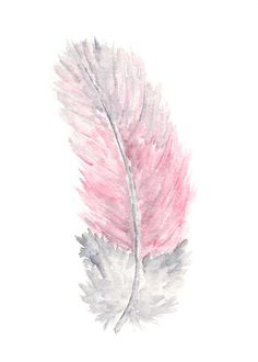 GREY and PINK feather ✿⊱╮