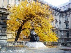 Hello everyone.  :D Monument of #NikolaTesla in the #autumn looks amazing. Doesn't it?
