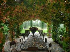 Colle Bereto winery in Radda in Chianti - Tuscany => if you have the chance, visit!