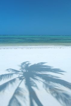The Palms, ZanzibarSource: Flickr / travelmarketingworldwide