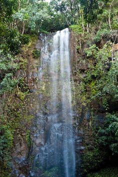 Kauai waterfall.