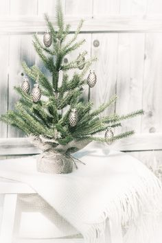 Christmas wishes by Beverly Cazzell @ Lavender Bleu