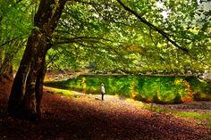 peace of  autumn