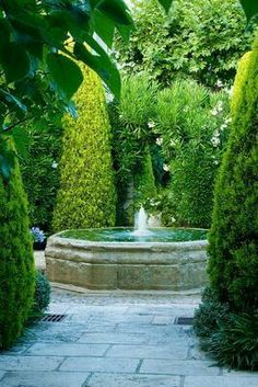 This is nice for around the pool with the emerald green arbor vitae. Architectural Landscape Design