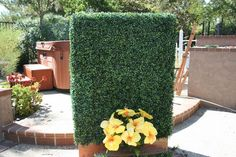 An amazing way to have some privacy in the jacuzzi! An artificial boxwood hedge panel. U.V. rated and is light weight so it can be easily moved.